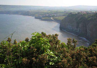 Cleveland Way - cliffs near Robin Hood's Bay
