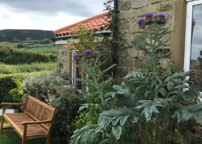 Side Garden at Holly Cottage, near Robin Hood's Bay