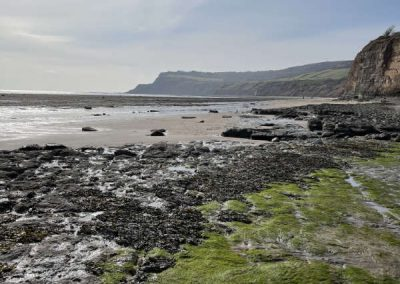 Yorkshire coastline, near Robin Hood's Bay